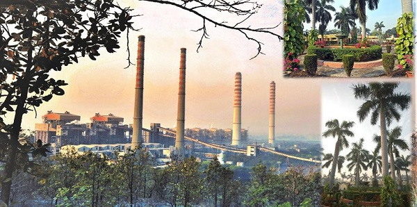 NTPC Singrauli records highest Plant Load Factor