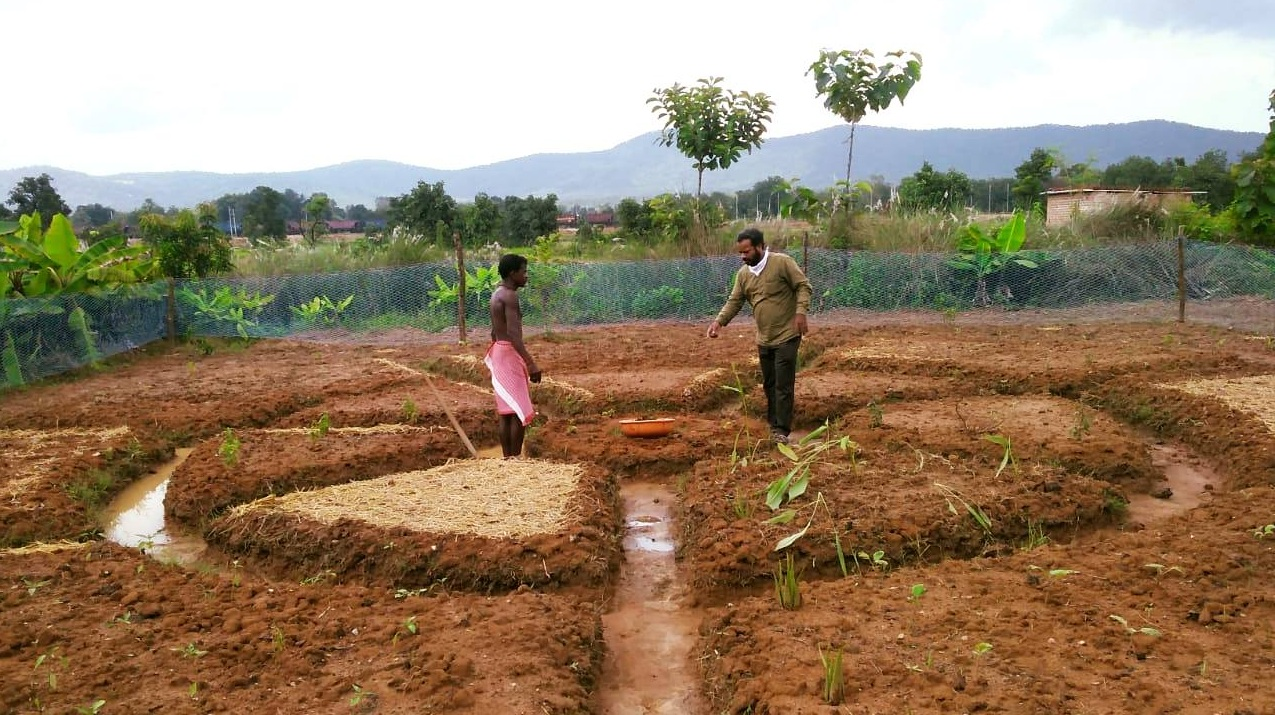 MCL promoting organic farming through aahaar mandal