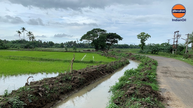 Restoration of Water Canals Back to Life at Moolangudi in Tamil Nadu