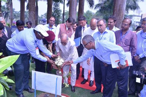 Tree plantation by Honable President at